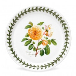 Brotteller Botanic Roses - 18cm Teasing Georgia