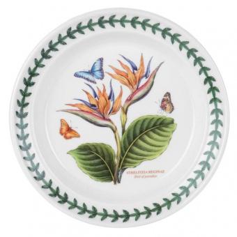 Brotteller Exotic Botanic Garden - 18cm