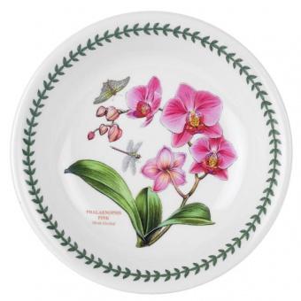 Pastateller Exotic Botanic Garden - 20cm