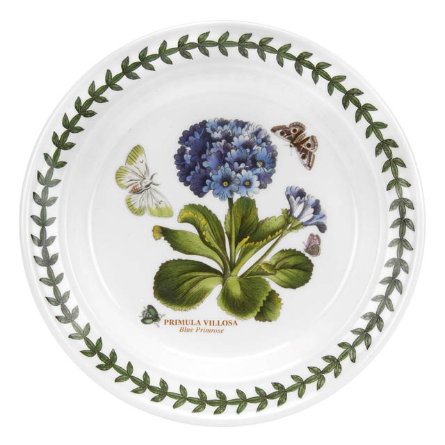 Brotteller - 18cm Primula