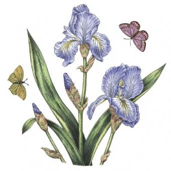Frühstücksteller Botanic Garden - 20cm Iris